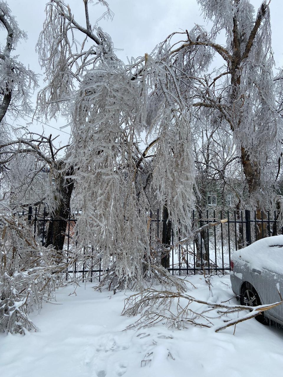 Владивосток в ледяном плену. Фото и видео очевидца.