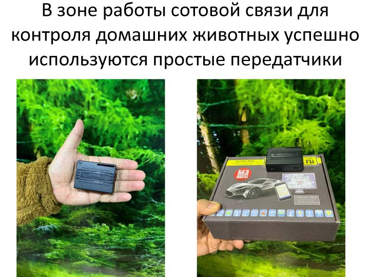 Электричество и интернет  в тайге и тундре! Традиционная хозяйственная деятельность и инновации