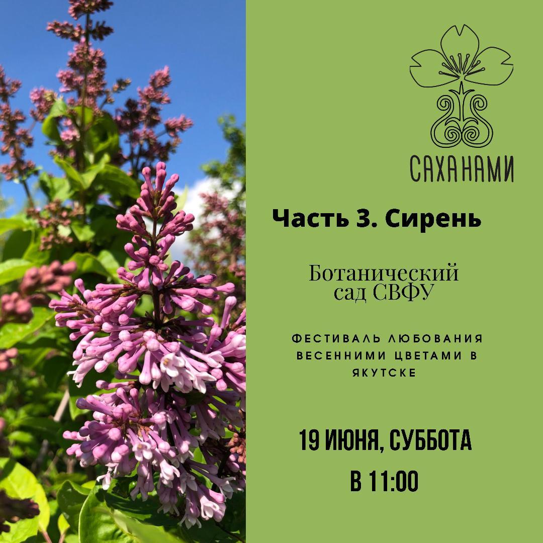 """""""Саханами"""" в Ботаническом саду СВФУ!"""