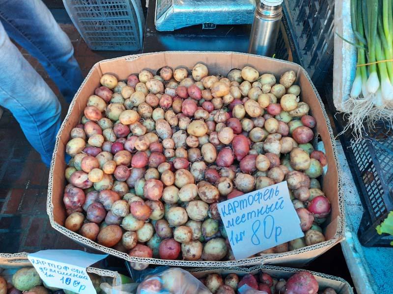 Крестьянский рынок 14.08.2021 г.: Цены местной и привозной картошки сравнялись! Местную мелкую картошку можно купить за 80 рублей!