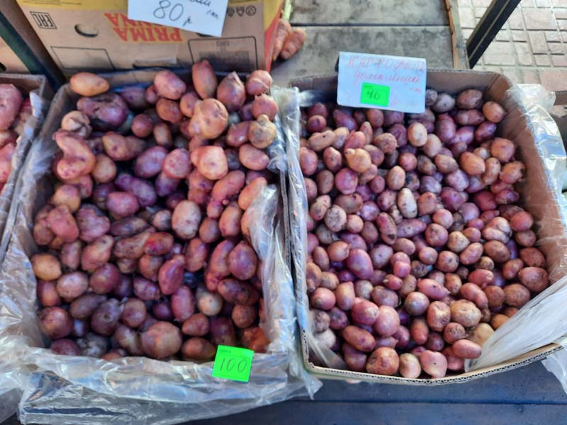 Крестьянский рынок 25.08.2021 г.: Картошка стала крупнее, огурцы и кабачки подорожали!