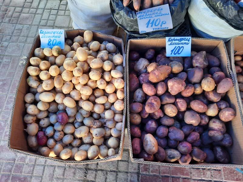 Крестьянский рынок 5.09.2021 г.: Картошка подешевела до 50 рублей!