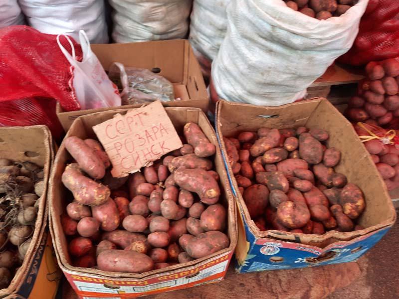 Комсомольская площадь 09.10.2021 года: цены на картошку не меняются. Мясо на Крестьянском рынке.